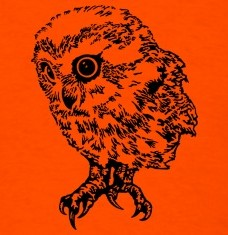 Design your Cute owl t-shirts and accessories