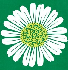 Design your Daisy t-shirts and accessories