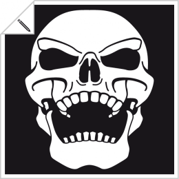 Skull and crossbones to be printed online. Customize your pirate t-shirt.